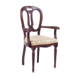 Ludovic with armrests front